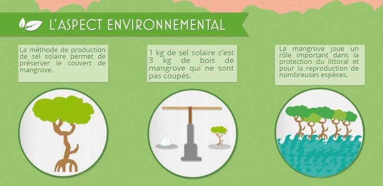 aspect-environnemental